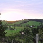 20110209B - helensville sunset (1)