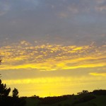 20110209B - helensville sunset (18)